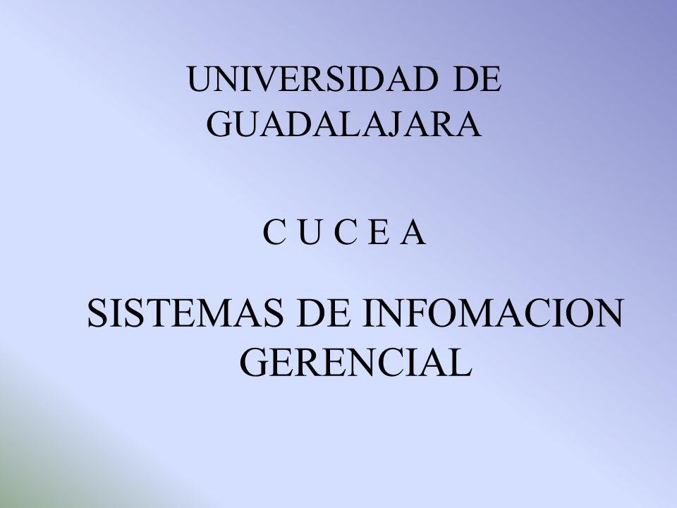 SISTEMAS DE INFOMACION GERENCIAL