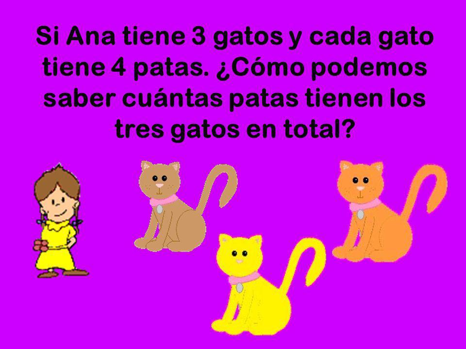 Si Ana tiene 3 gatos y cada gato tiene 4 patas
