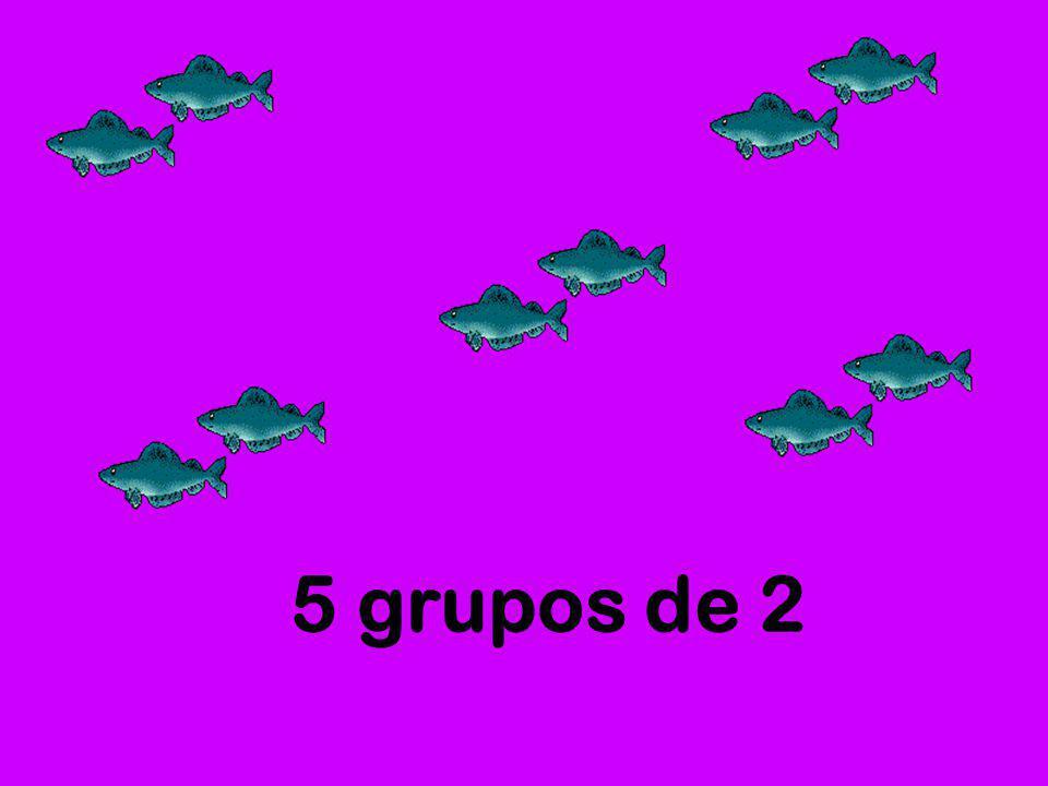 5 grupos de 2
