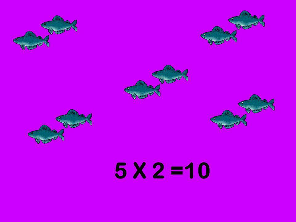 5 X 2 =10