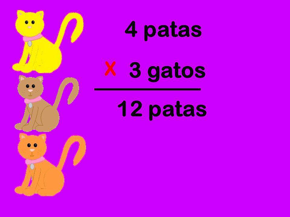 4 patas X 3 gatos 12 patas