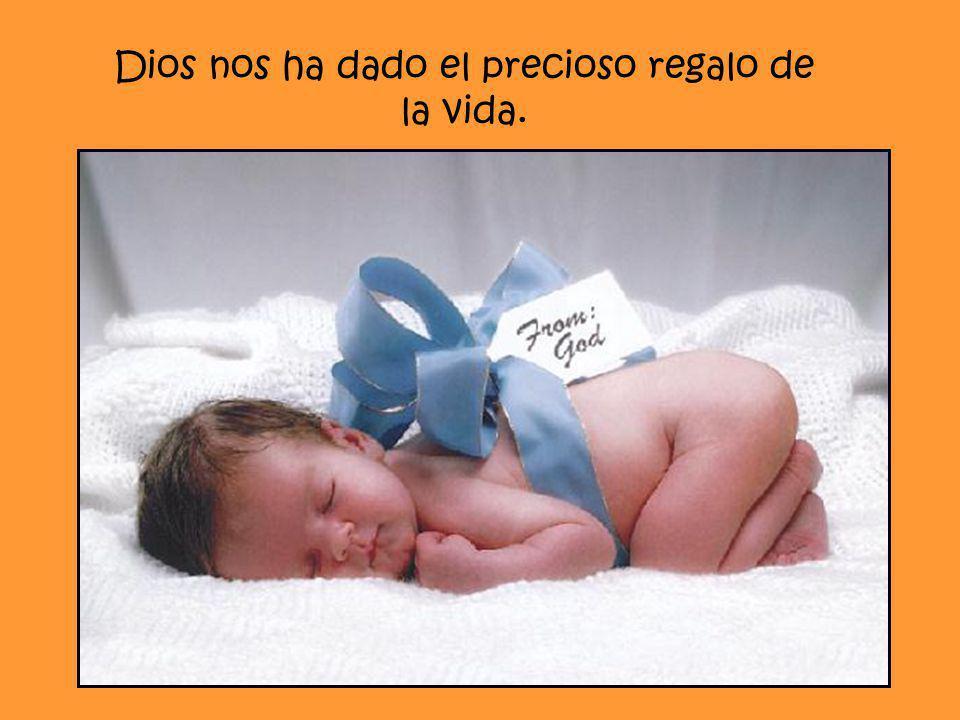 Dios nos ha dado el precioso regalo de la vida.