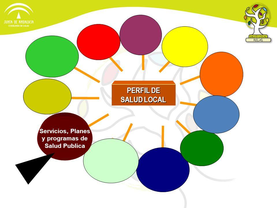 PERFIL DE SALUD LOCAL Servicios, Planes y programas de Salud Publica