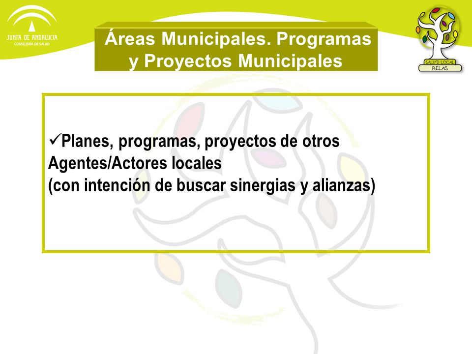 Áreas Municipales. Programas y Proyectos Municipales