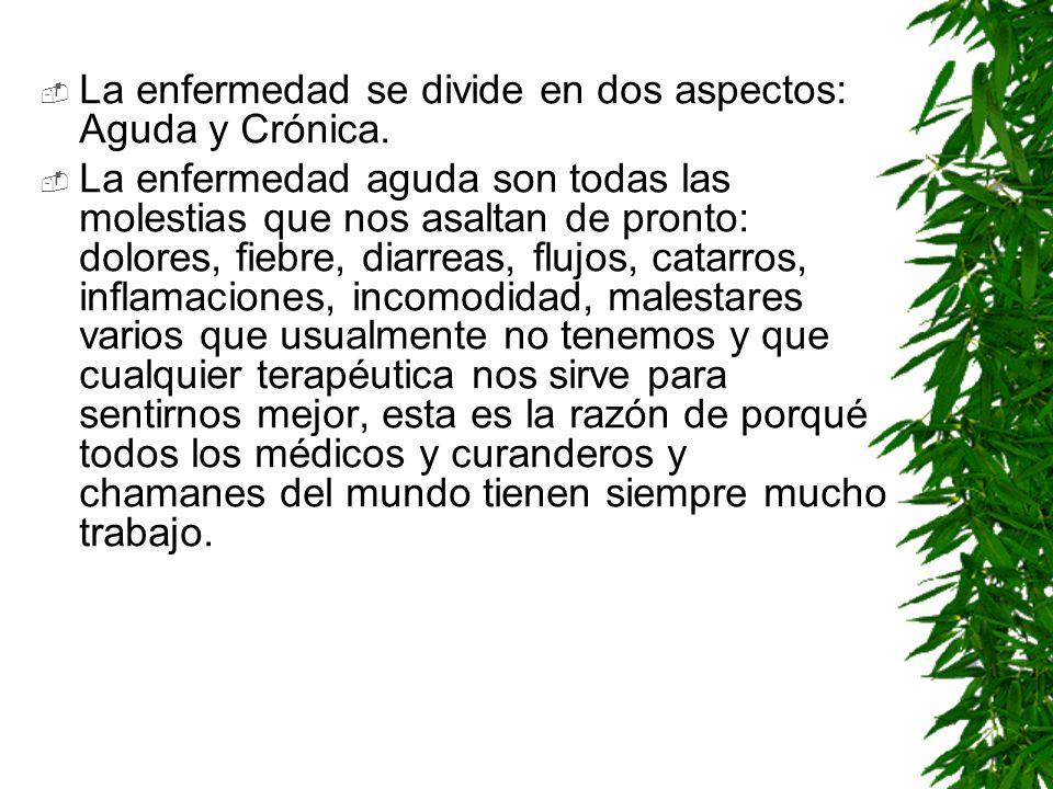 La enfermedad se divide en dos aspectos: Aguda y Crónica.