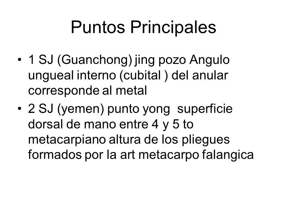 Puntos Principales 1 SJ (Guanchong) jing pozo Angulo ungueal interno (cubital ) del anular corresponde al metal.
