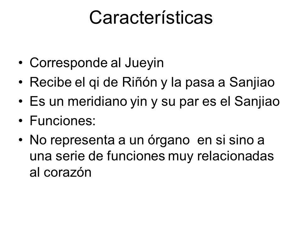 Características Corresponde al Jueyin