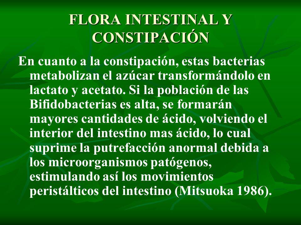 FLORA INTESTINAL Y CONSTIPACIÓN