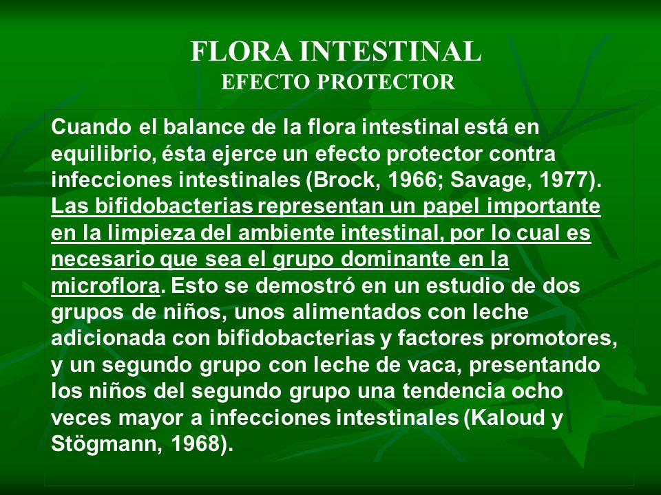 FLORA INTESTINAL EFECTO PROTECTOR