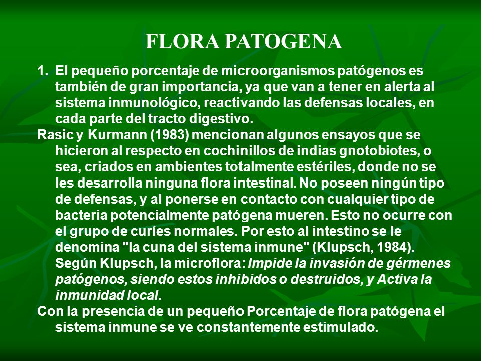 FLORA PATOGENA
