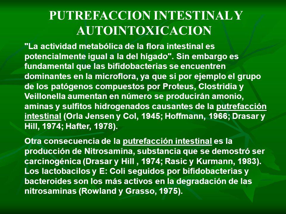 PUTREFACCION INTESTINAL Y AUTOINTOXICACION