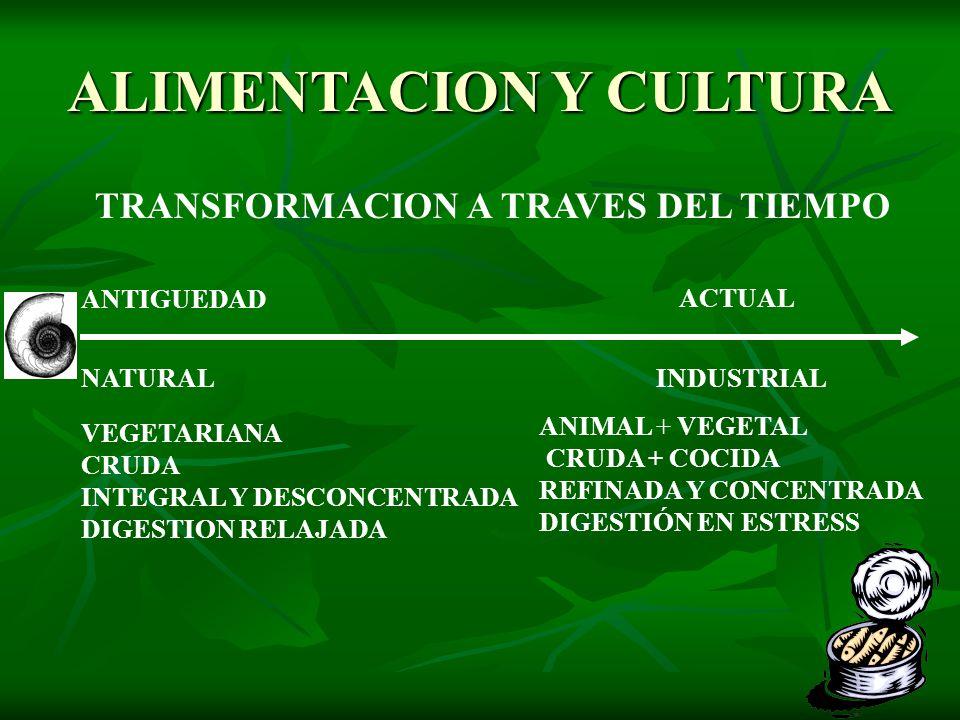 ALIMENTACION Y CULTURA