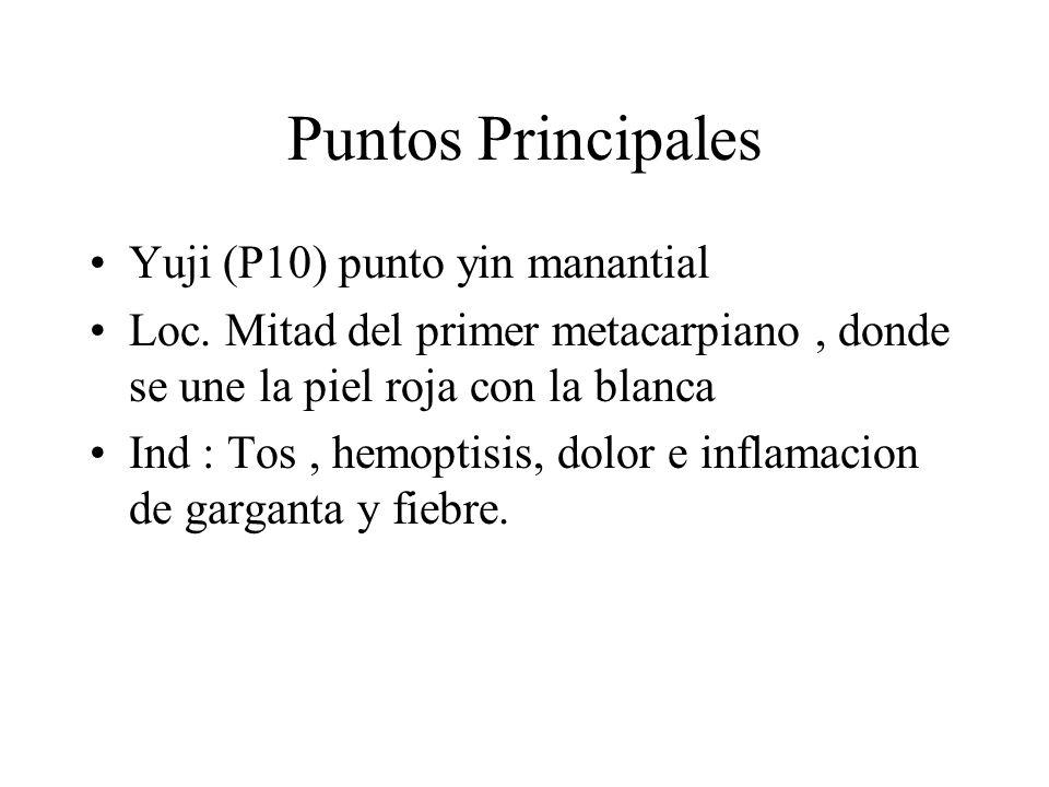 Puntos Principales Yuji (P10) punto yin manantial