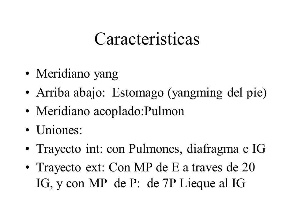 Caracteristicas Meridiano yang
