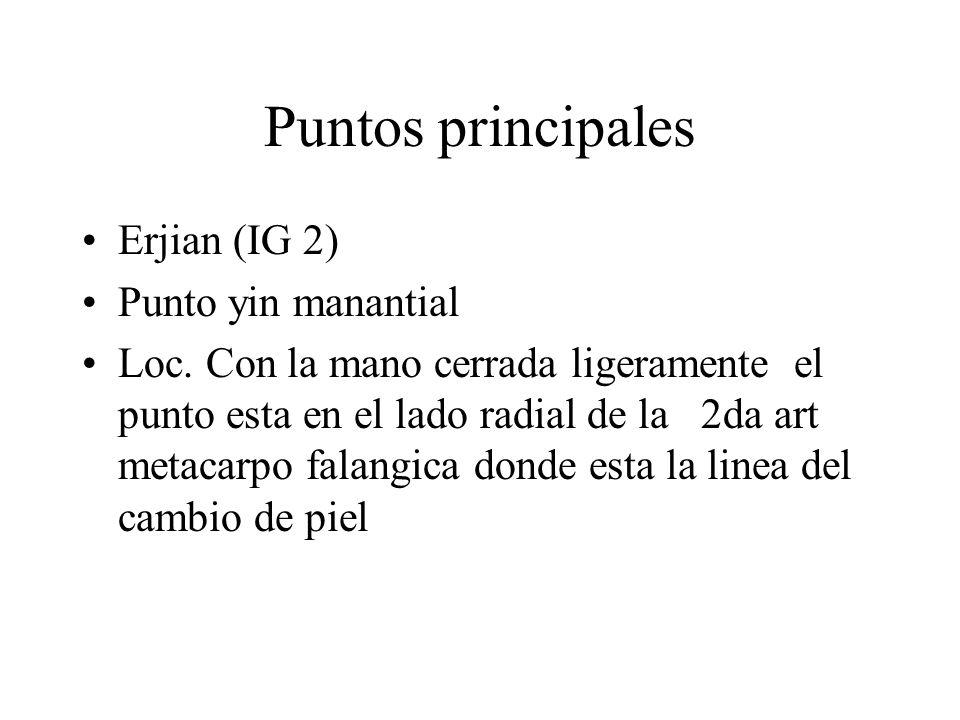 Puntos principales Erjian (IG 2) Punto yin manantial