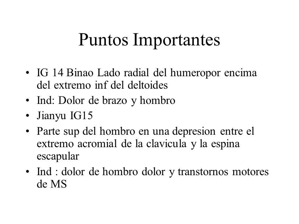 Puntos Importantes IG 14 Binao Lado radial del humeropor encima del extremo inf del deltoides. Ind: Dolor de brazo y hombro.