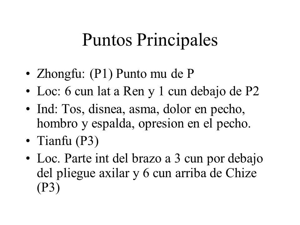 Puntos Principales Zhongfu: (P1) Punto mu de P