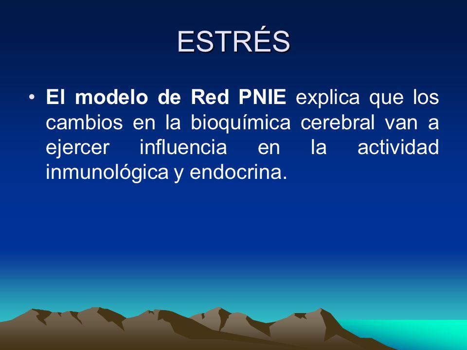 ESTRÉS El modelo de Red PNIE explica que los cambios en la bioquímica cerebral van a ejercer influencia en la actividad inmunológica y endocrina.