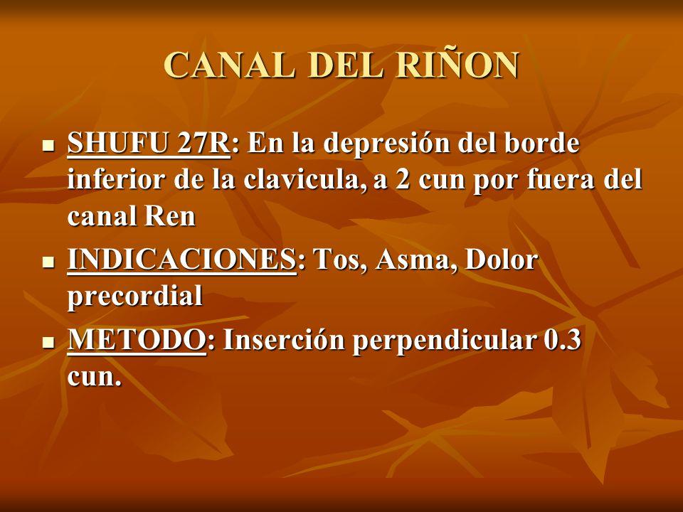CANAL DEL RIÑON SHUFU 27R: En la depresión del borde inferior de la clavicula, a 2 cun por fuera del canal Ren.