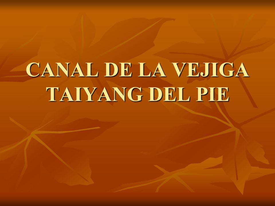 CANAL DE LA VEJIGA TAIYANG DEL PIE