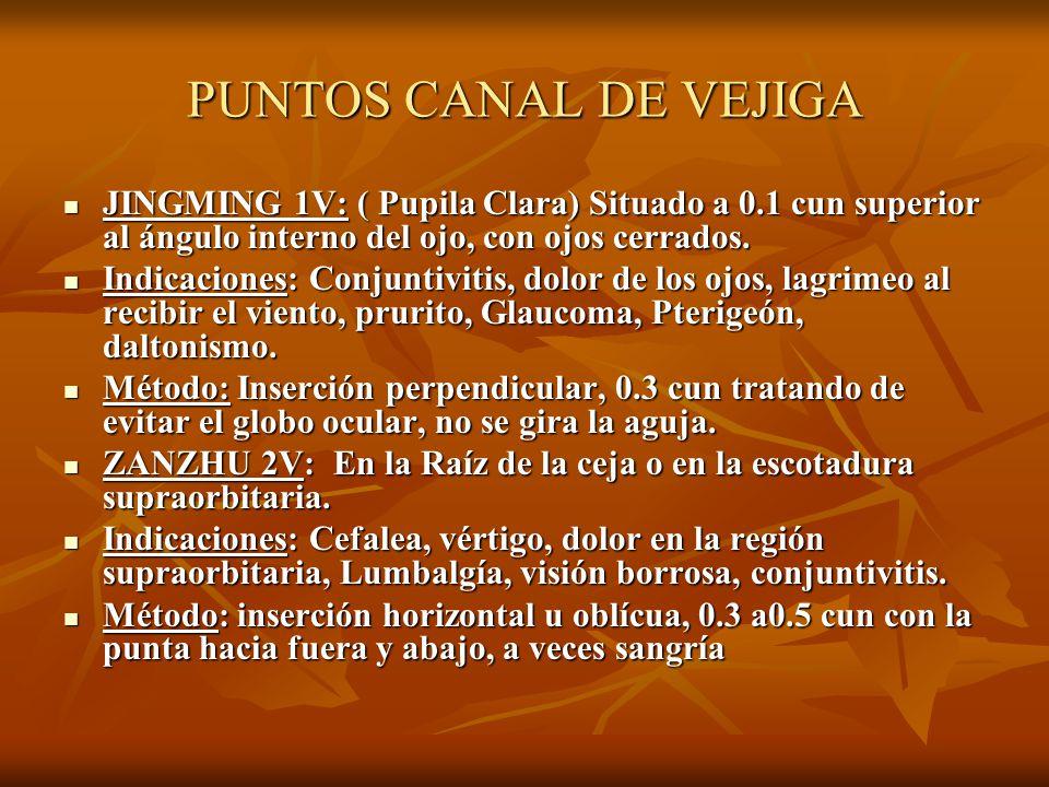 PUNTOS CANAL DE VEJIGA JINGMING 1V: ( Pupila Clara) Situado a 0.1 cun superior al ángulo interno del ojo, con ojos cerrados.
