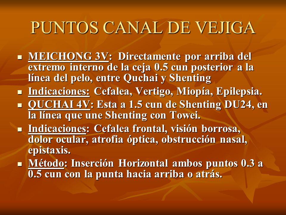 PUNTOS CANAL DE VEJIGA