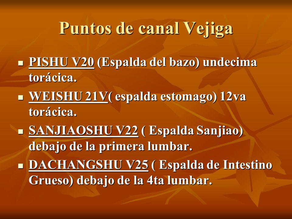 Puntos de canal Vejiga PISHU V20 (Espalda del bazo) undecima torácica.