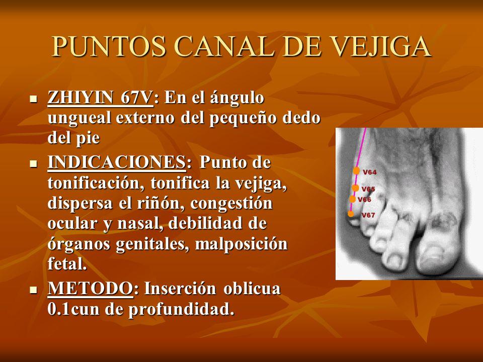 PUNTOS CANAL DE VEJIGA ZHIYIN 67V: En el ángulo ungueal externo del pequeño dedo del pie.