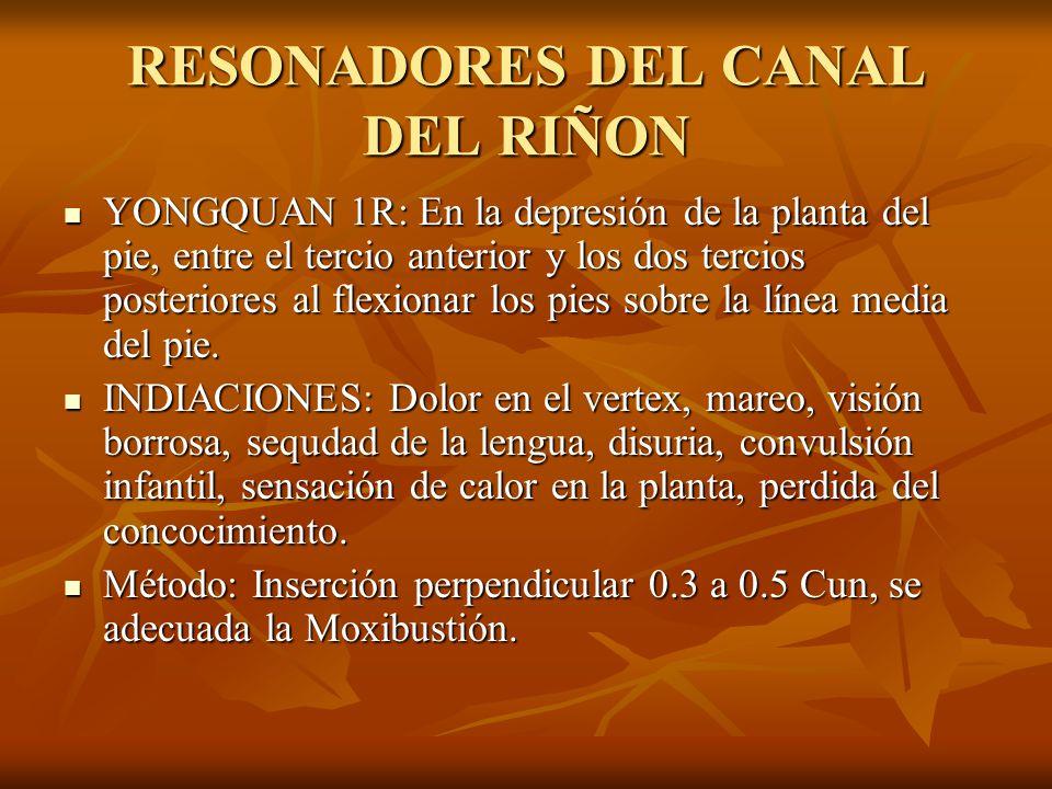 RESONADORES DEL CANAL DEL RIÑON