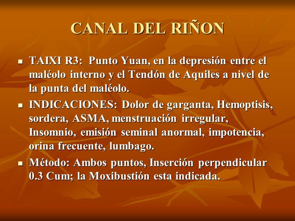 CANAL DEL RIÑON TAIXI R3: Punto Yuan, en la depresión entre el maléolo interno y el Tendón de Aquiles a nivel de la punta del maléolo.
