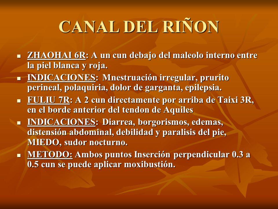 CANAL DEL RIÑON ZHAOHAI 6R: A un cun debajo del maleolo interno entre la piel blanca y roja.