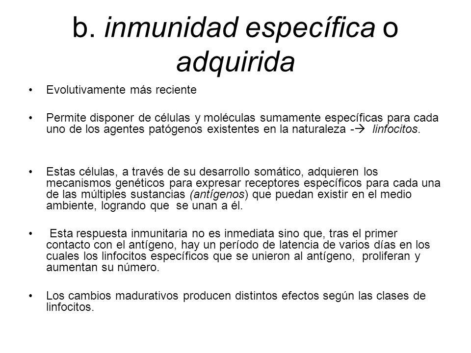 b. inmunidad específica o adquirida