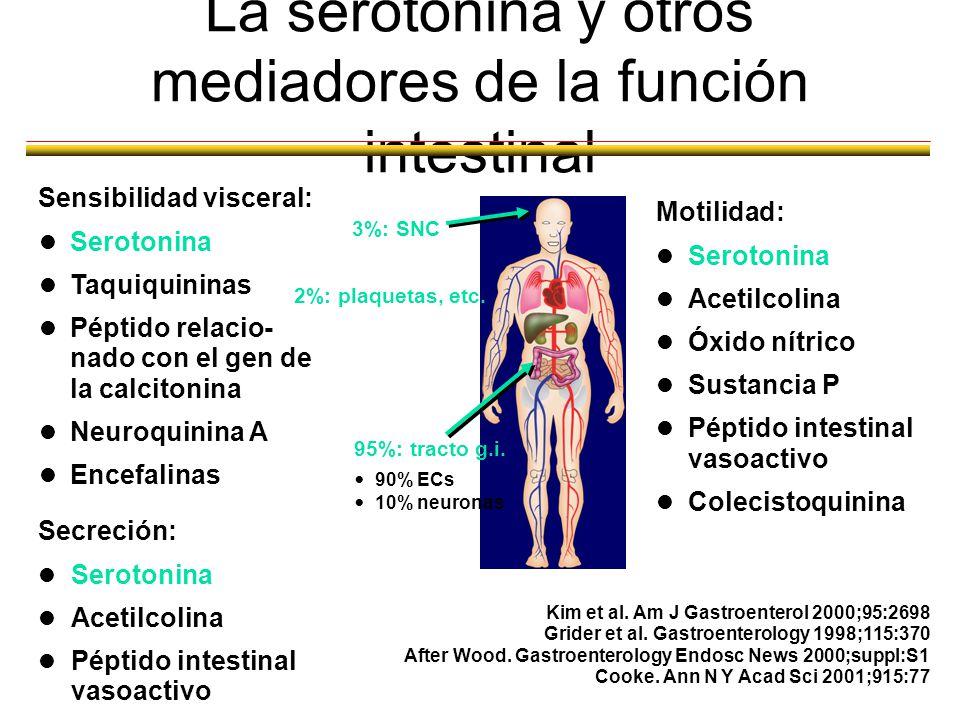 La serotonina y otros mediadores de la función intestinal