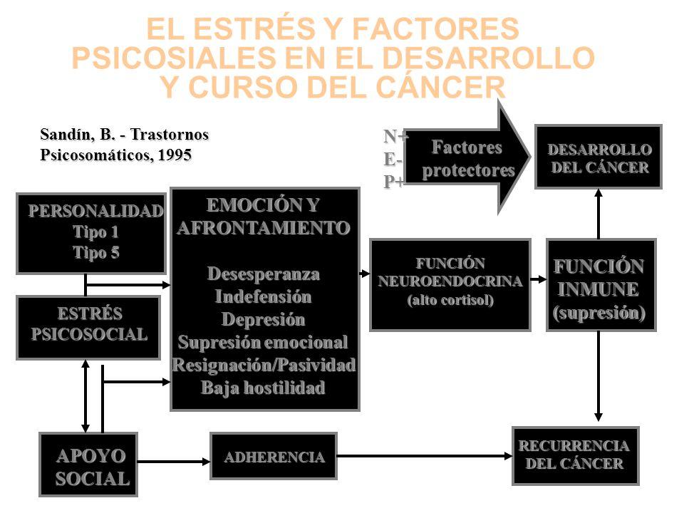 EL ESTRÉS Y FACTORES PSICOSIALES EN EL DESARROLLO Y CURSO DEL CÁNCER