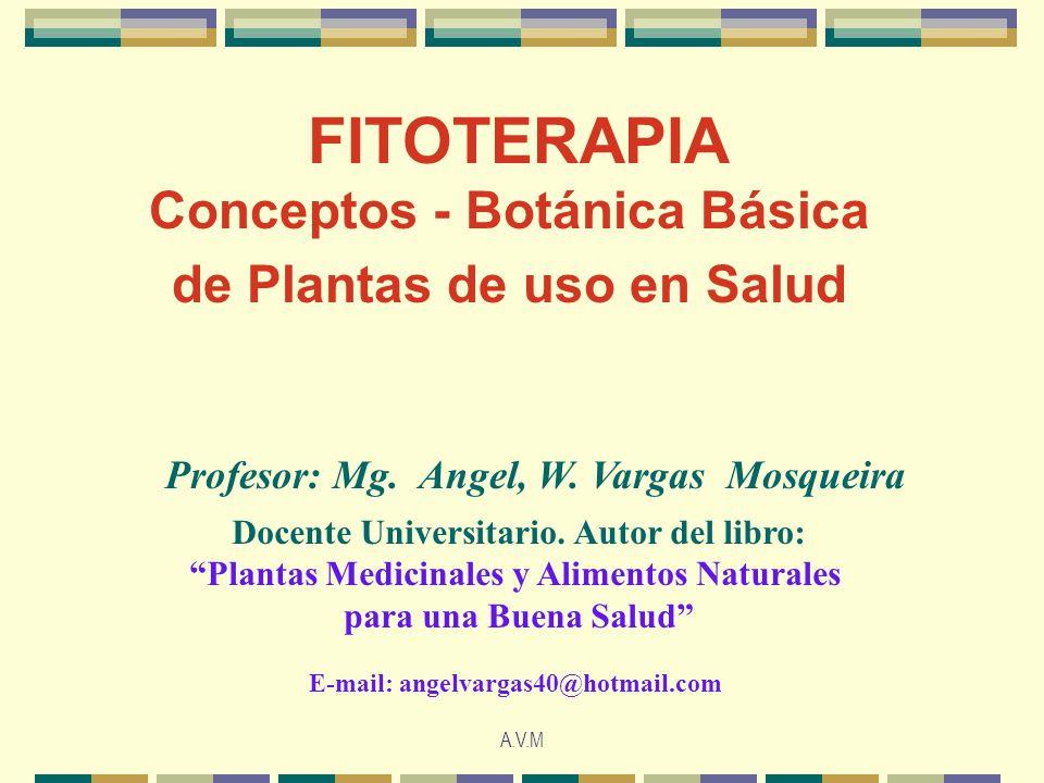 FITOTERAPIA Conceptos - Botánica Básica de Plantas de uso en Salud