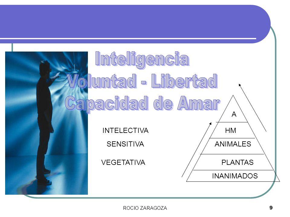 Inteligencia Voluntad - Libertad Capacidad de Amar A INTELECTIVA HM