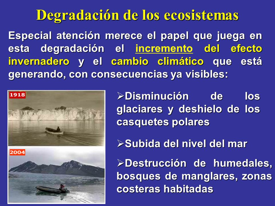 Degradación de los ecosistemas