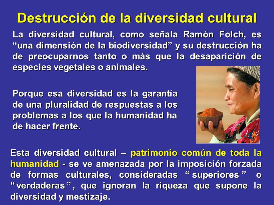 Destrucción de la diversidad cultural