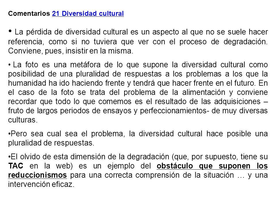 Comentarios 21 Diversidad cultural