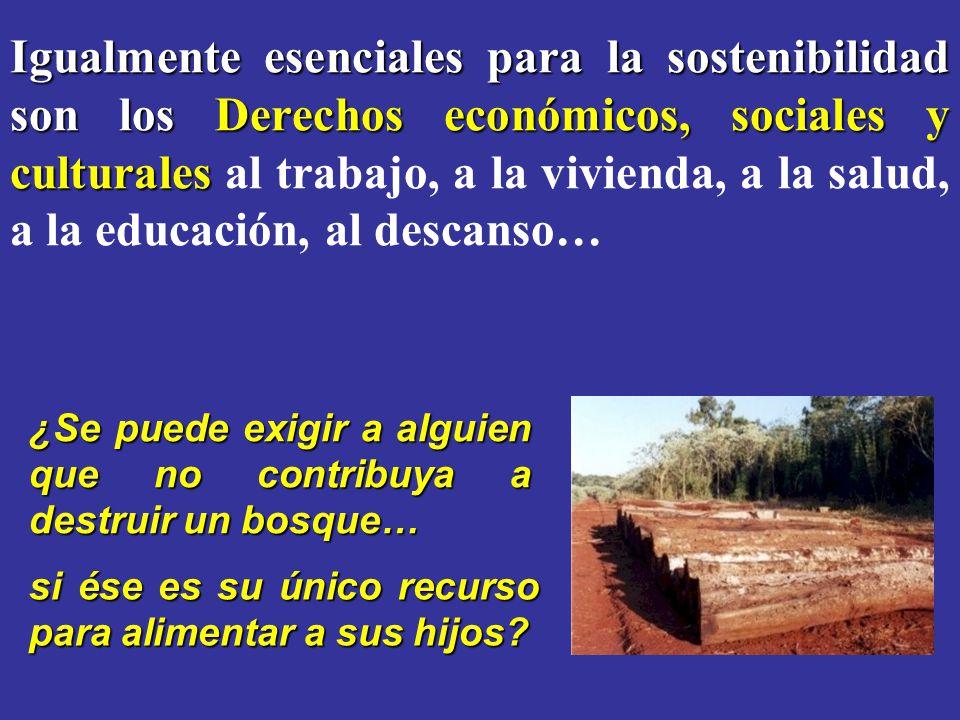 Igualmente esenciales para la sostenibilidad son los Derechos económicos, sociales y culturales al trabajo, a la vivienda, a la salud, a la educación, al descanso…