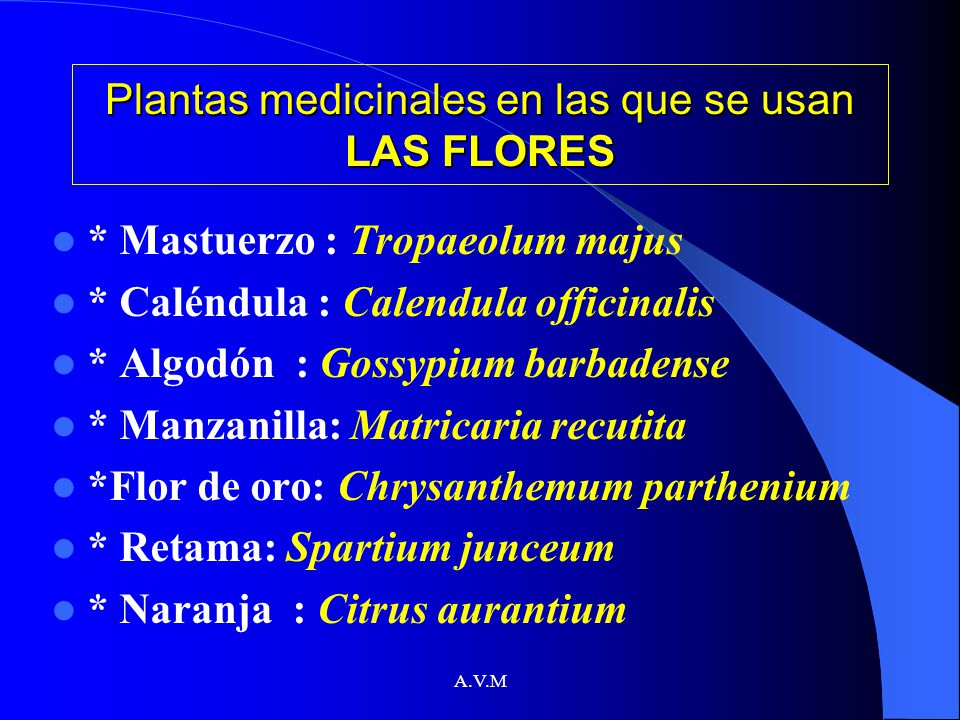 Plantas medicinales en las que se usan LAS FLORES