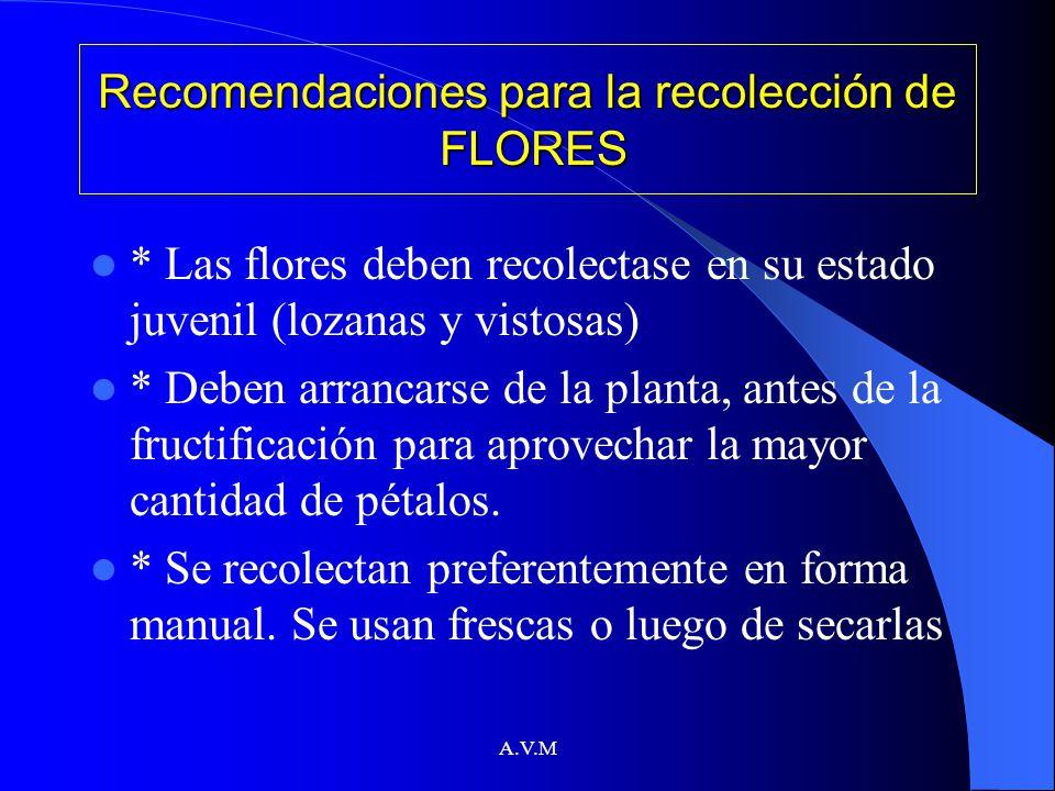 Recomendaciones para la recolección de FLORES
