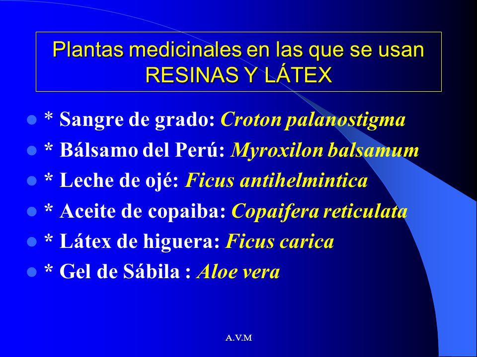 Plantas medicinales en las que se usan RESINAS Y LÁTEX