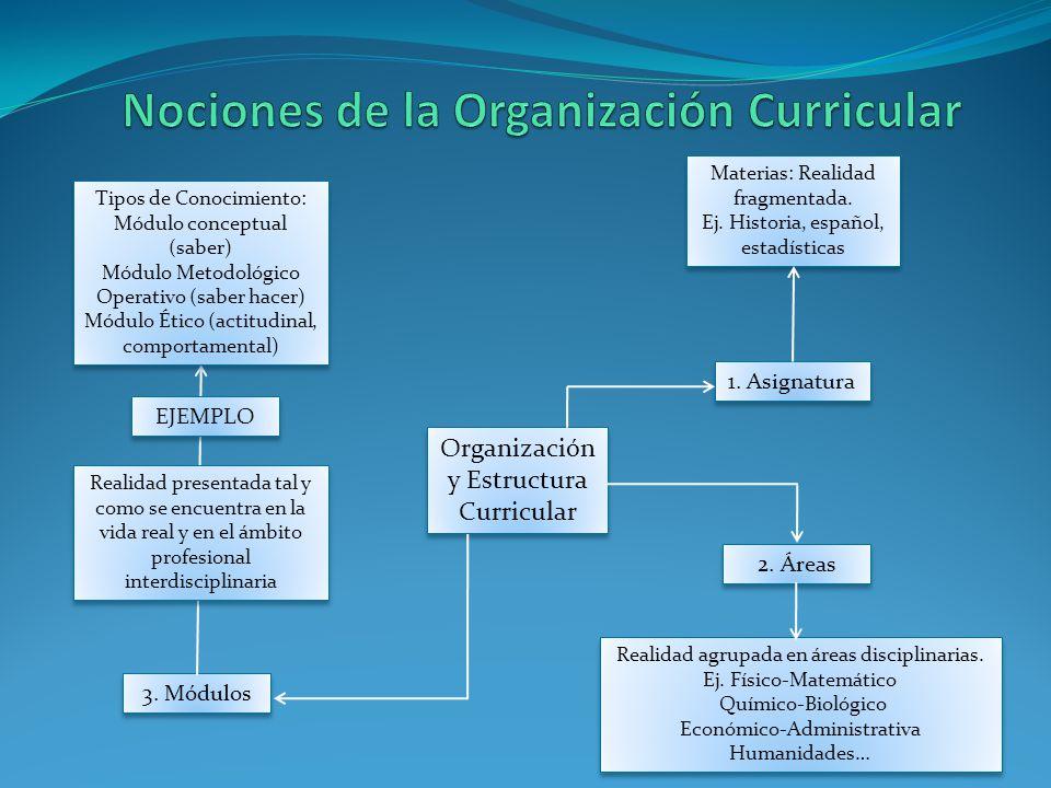 Nociones de la Organización Curricular