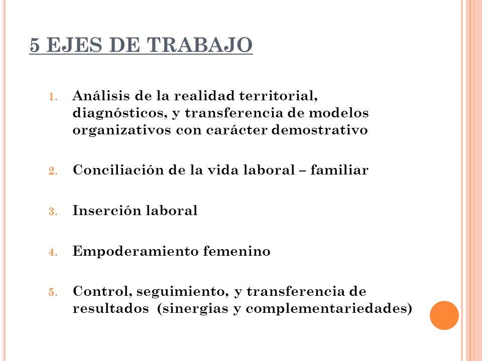 5 EJES DE TRABAJO Análisis de la realidad territorial, diagnósticos, y transferencia de modelos organizativos con carácter demostrativo.