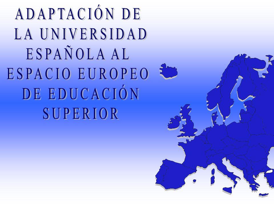 ADAPTACIÓN DE LA UNIVERSIDAD ESPAÑOLA AL ESPACIO EUROPEO DE EDUCACIÓN SUPERIOR