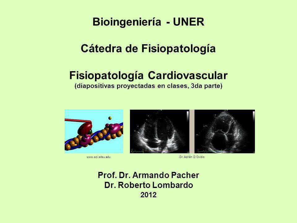 Bioingeniería - UNER Cátedra de Fisiopatología Fisiopatología Cardiovascular (diapositivas proyectadas en clases, 3da parte) Prof. Dr. Armando Pacher Dr. Roberto Lombardo 2012