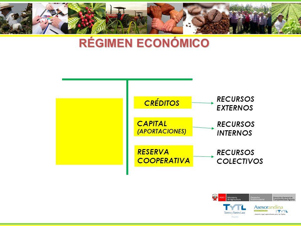RÉGIMEN ECONÓMICO RECURSOS CRÉDITOS EXTERNOS CAPITAL RECURSOS INTERNOS