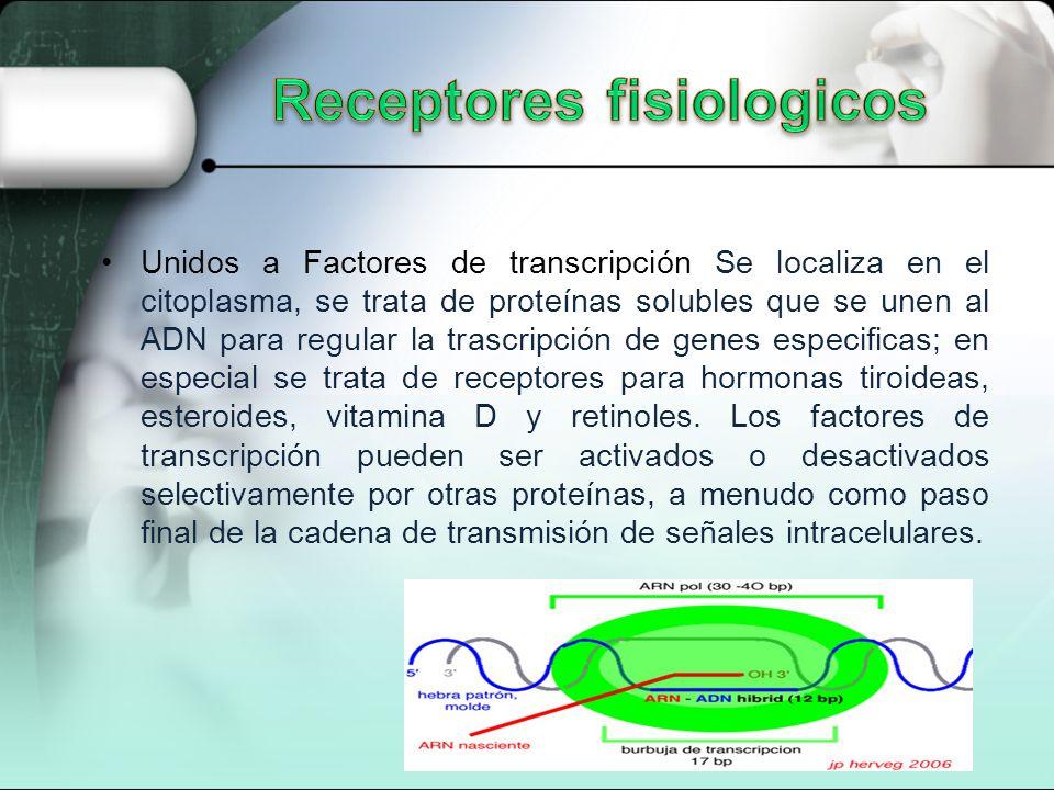 Receptores fisiologicos