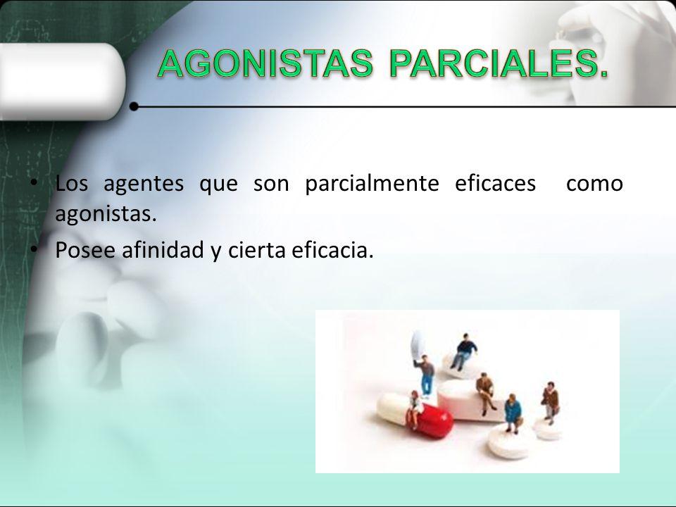 AGONISTAS PARCIALES. Los agentes que son parcialmente eficaces como agonistas.